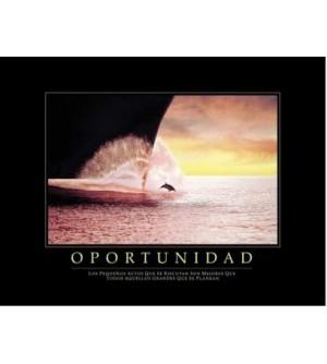 Cuadro Oportunidad Delfín